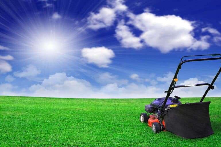 Black and Decker Lawn Mowers