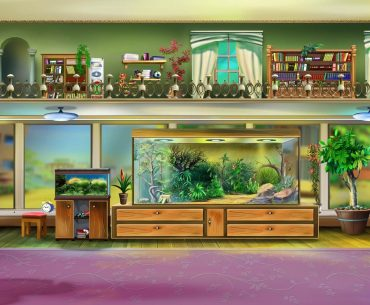 aquariums made from tempered glass